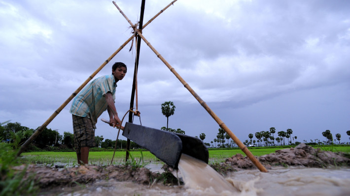 A farmer pulls water into his rice field in Cambodia
