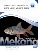 Photos of Common Fishes in the Lower Mekong River cover