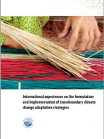 International Experiences on the Formulation and Implementation of Transboundary Climate Change Adaptation Strategies